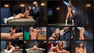HOGTIED: May 14, 2015 - Sgt. Major and Abella Danger