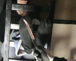 Silvia saint boots